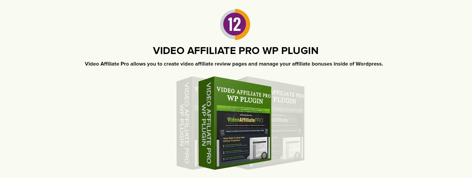 video affiliate pro wp plugin