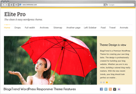 Elite Pro WordPress Theme