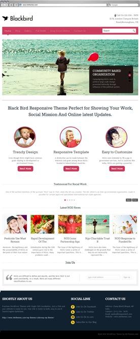 Blackbird Theme Previews (Multiple Examples)
