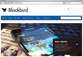 Blackbird Responsive WordPress Theme