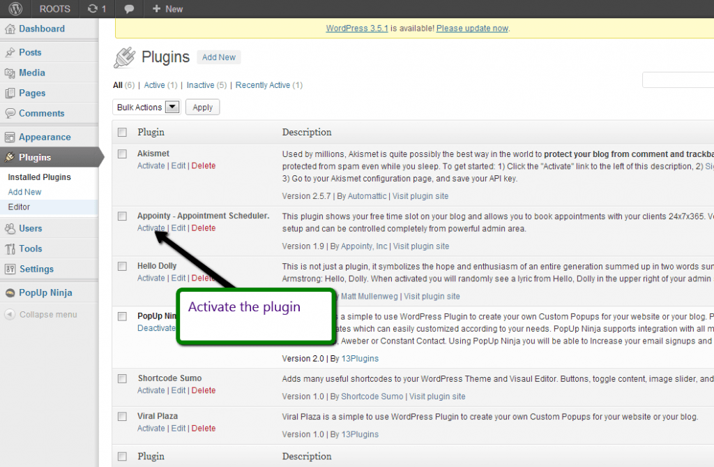 Activating appointy wp plugin