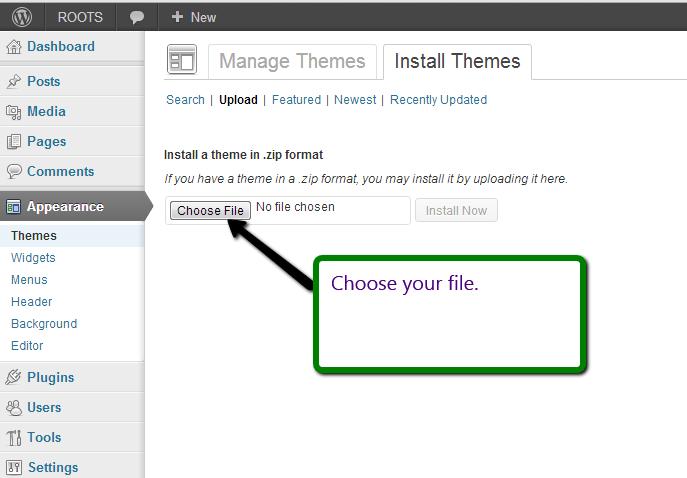 Choosing the file