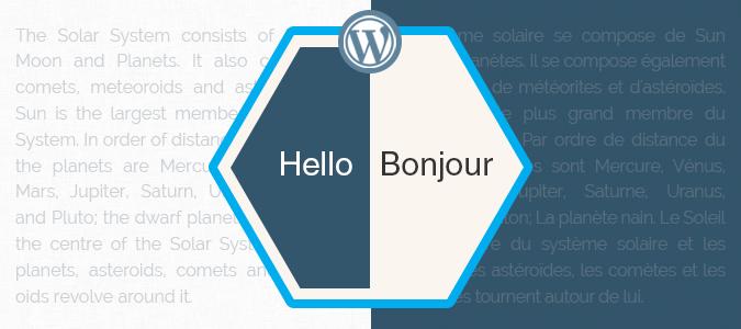 Translation of WordPress Theme Using PO File
