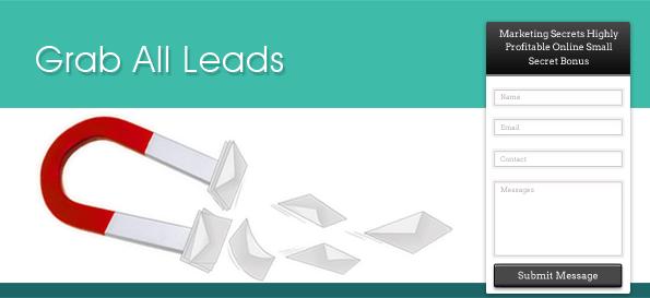 ink lead capture plugin