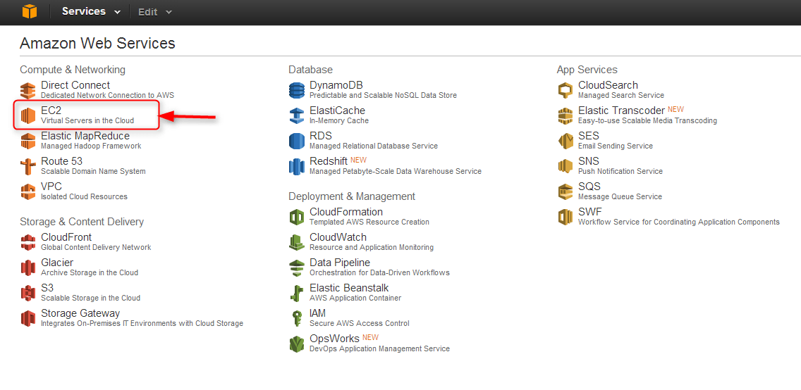 select EC2 from the list of Amazon Web Services