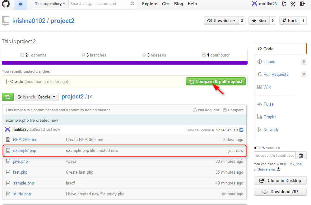 step to click on compare & pull request