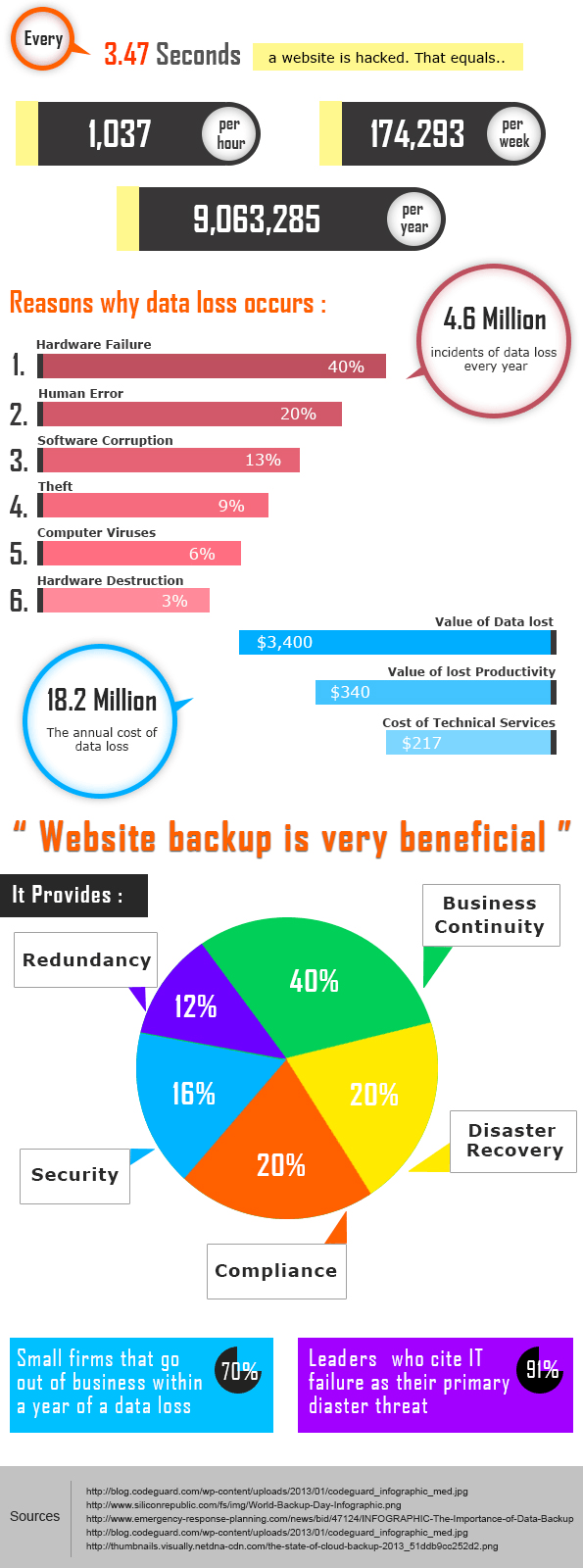 Website backup infographics