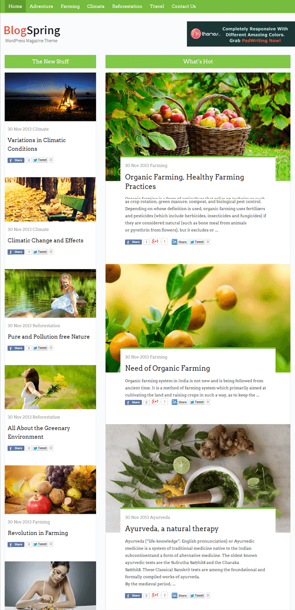 BlogSpring Portfolio