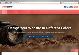 Woodpecker Business WordPress Theme