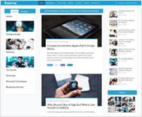 BlogSpring - WordPress Theme For Blogging and WP Magazine Sites