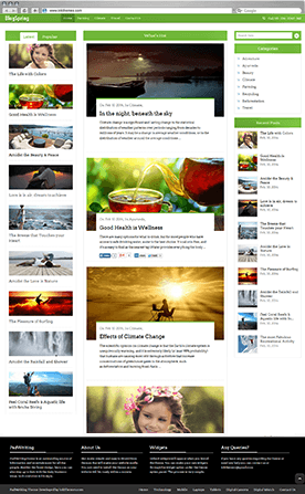 BlogSpring Theme Previews (Multiple Examples)