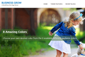 Business Grow One Page WordPress Theme
