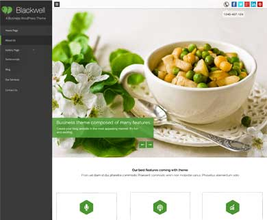 BlackWell - Single One Page WordPress Theme