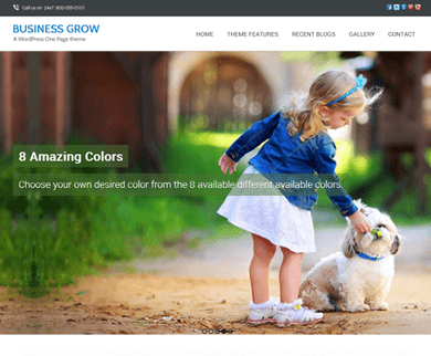 Business Grow - Parallax Scrolling WordPress Theme