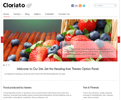 Cloriato WordPress Charity Theme