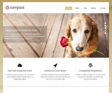 Compass Business WordPress Theme