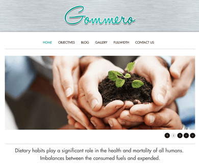 Gommero - Travel Blogger WordPress Theme