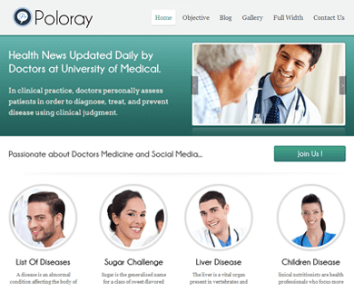 Poloray Responsive WordPress Theme