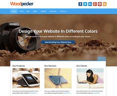 Woodpecker WordPress Professional Theme