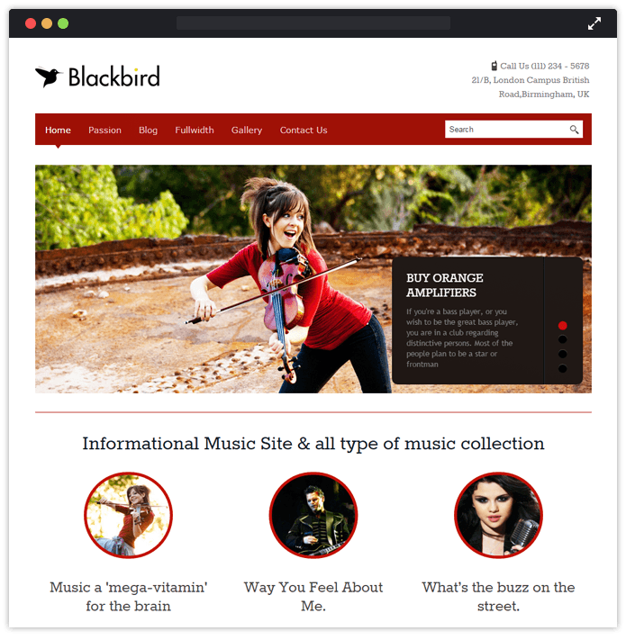 23 best premium wordpress themes 2018 inkthemes blackbird wordpress business inkthemes wajeb Gallery
