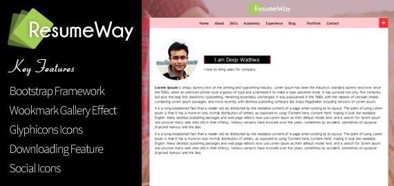 resumeway   wordpress vcard cv theme to build a resume website        responisve cv wordpress theme