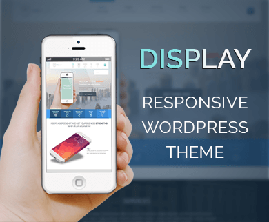 Display - Creative WordPress Theme