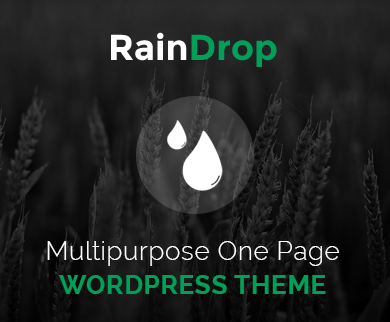 Raindrop - Multipurpose Feature WordPress One Page Theme