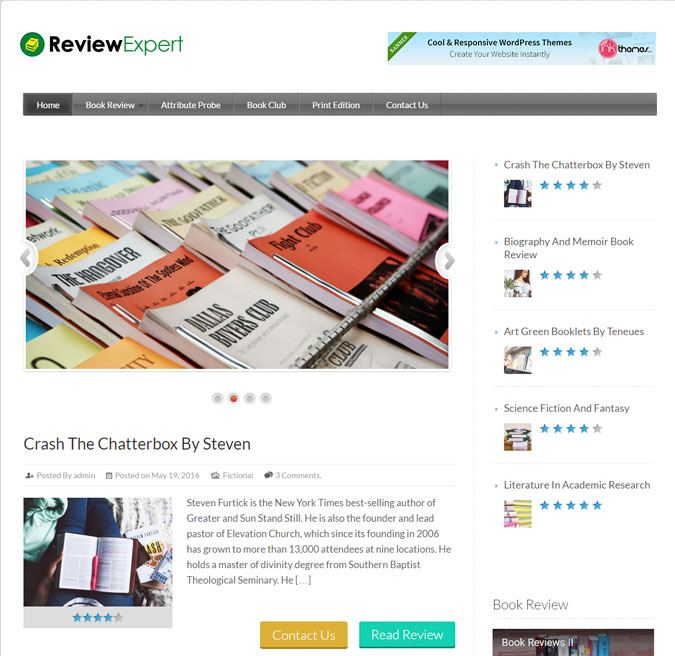 Review Expert WP Theme