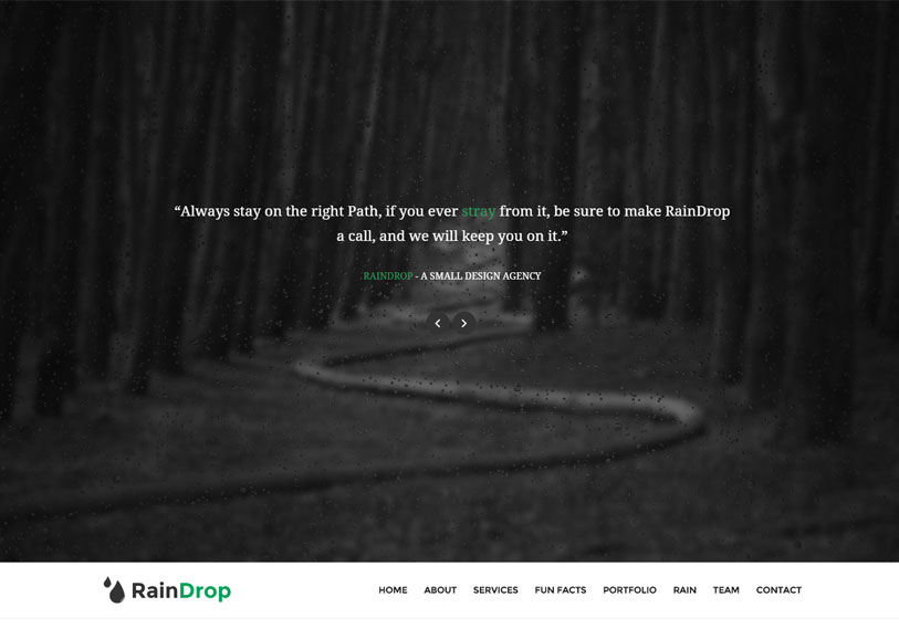Raindrop - beautiful and responsive multipurpose wordpress theme