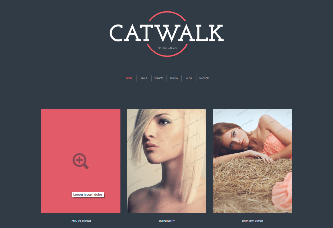 cat walk free theme previeww