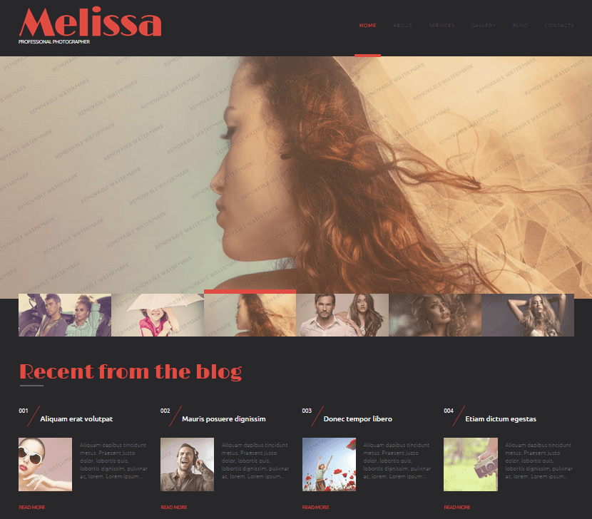 melissa free theme preview