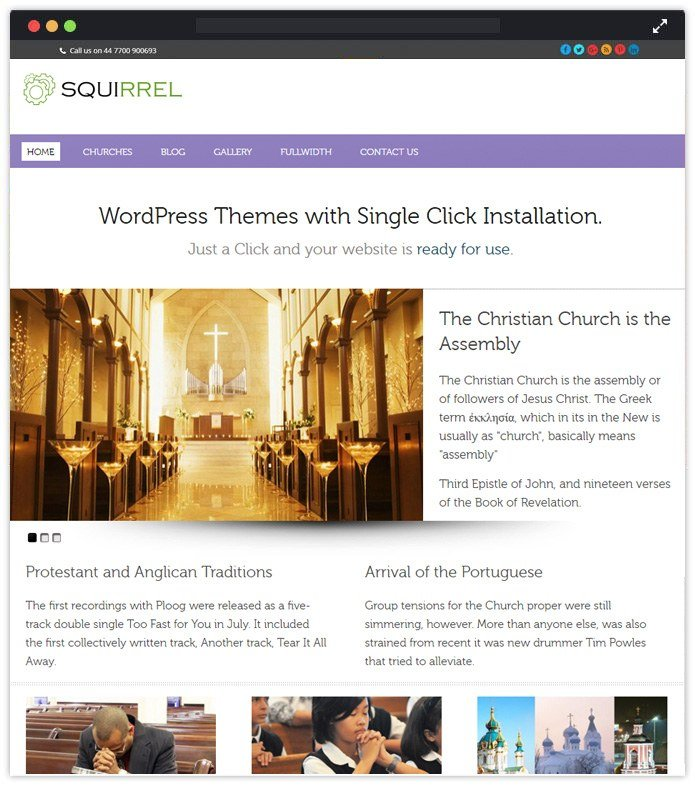 Squirrel Beautiful Responsive WordPress Themes
