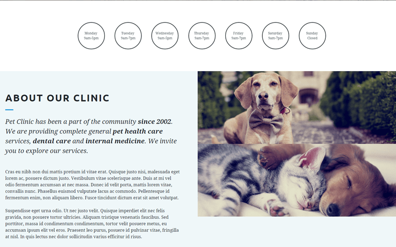 pet-center-landing-page-template