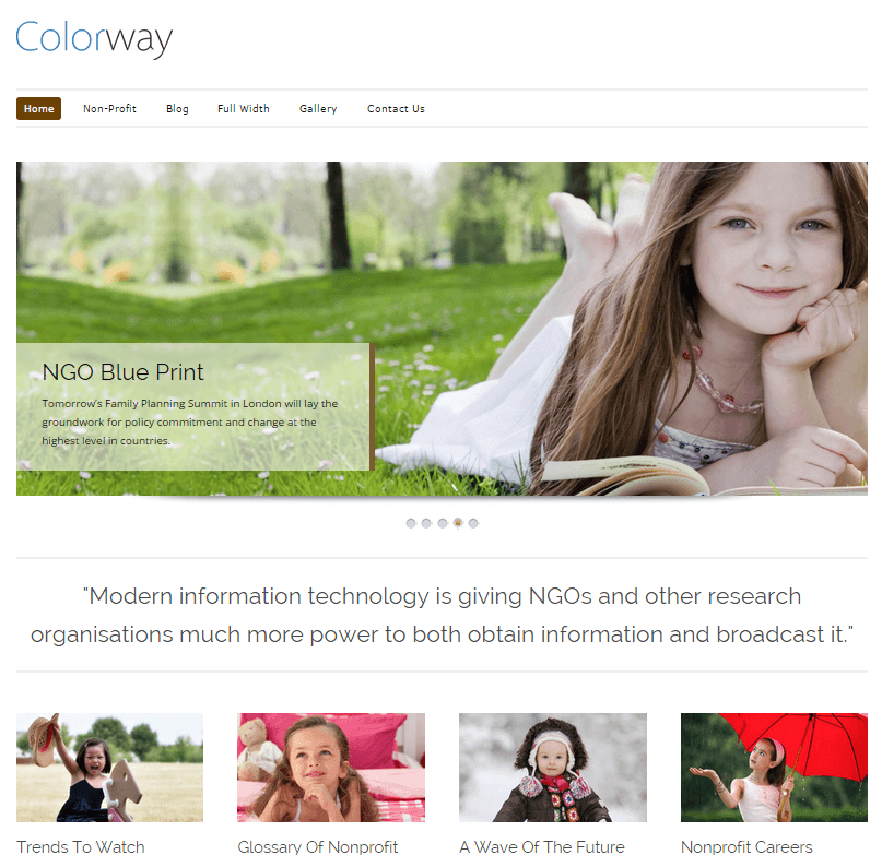 colorway wordpress theme - seo