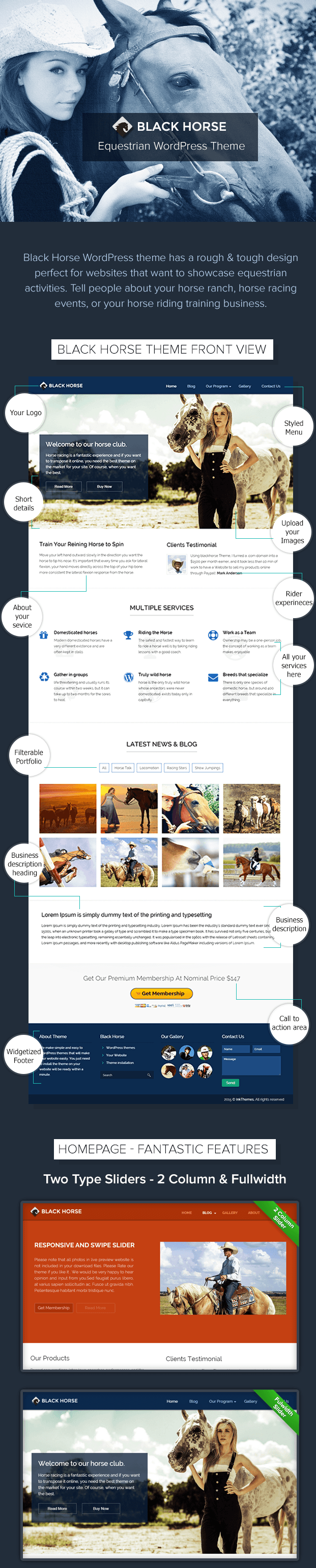 blackhorse wordpress theme