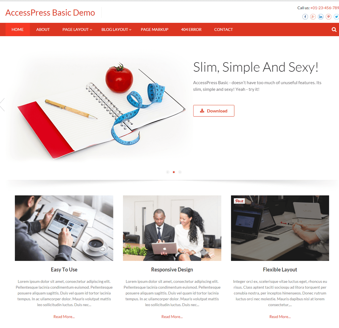 AccessPress Basic Free Responsive WordPress Theme