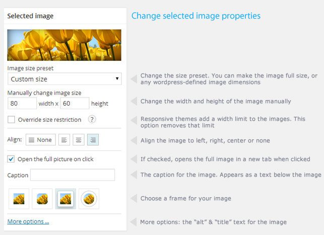 Image Pro-optimization-plugin
