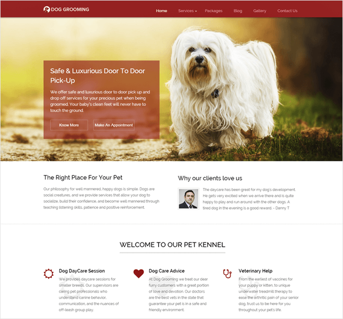 Dog Grooming-local-business-wp-InkThemes