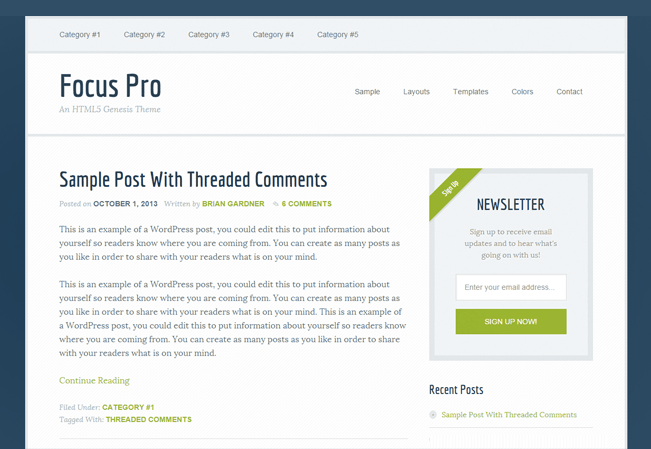 Focus-Pro-lead-generation-wp-InkThemes