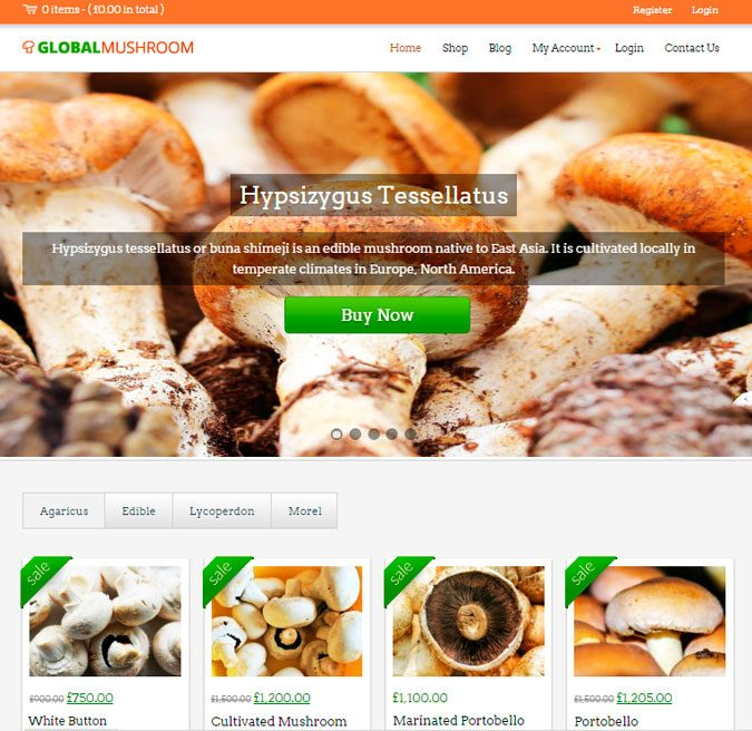 Global Mushroom wp theme