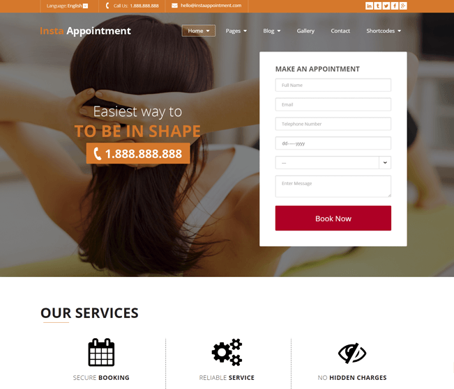 InstaAppointment booking Wp Theme