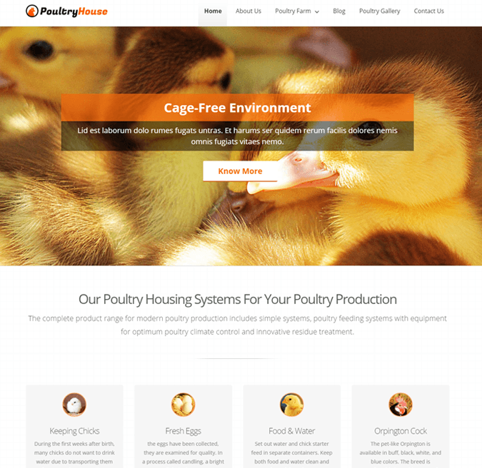 Poultry Fram WP Theme