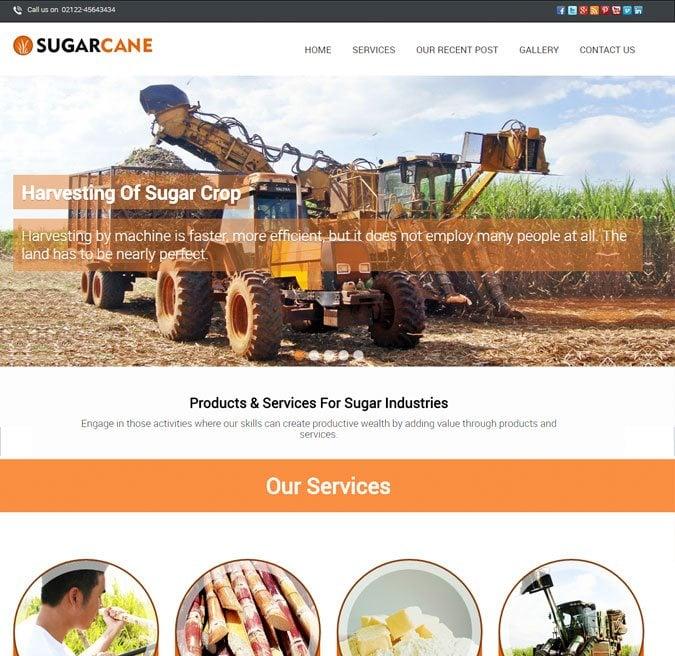 SugarCane WP Theme