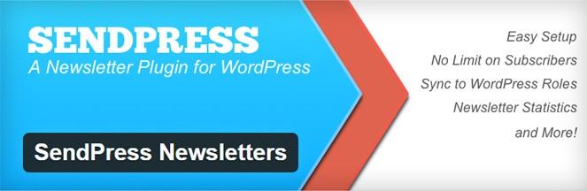 digitalaccesspass - newsletter plugin