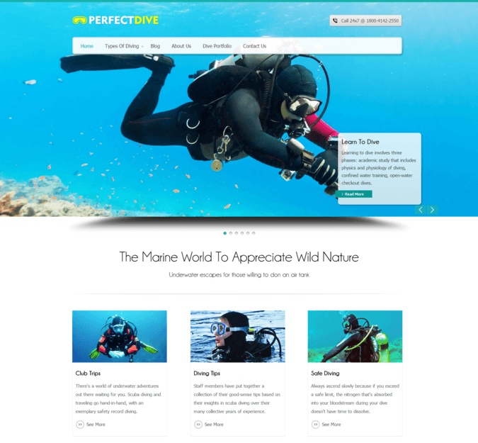 diving-wp-theme