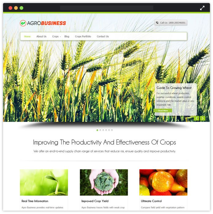 AgroBusiness WP Theme