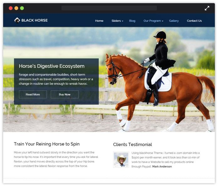 BlackHorse Top Academic WordPress Themes InkThemes