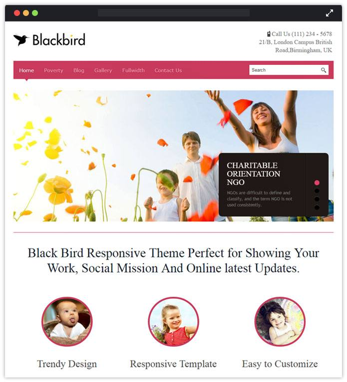 Blackbird Speaker WordPress Themes InkThemes