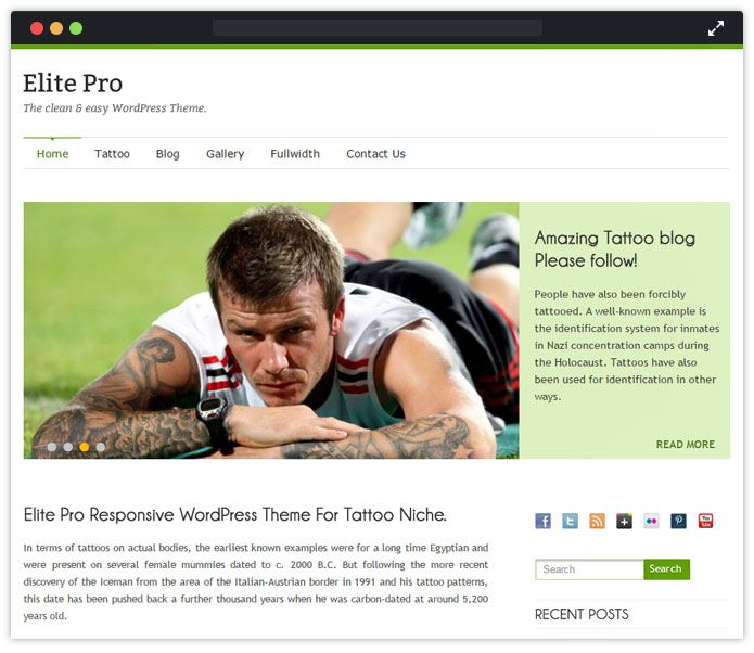 ElitePro WordPress Theme