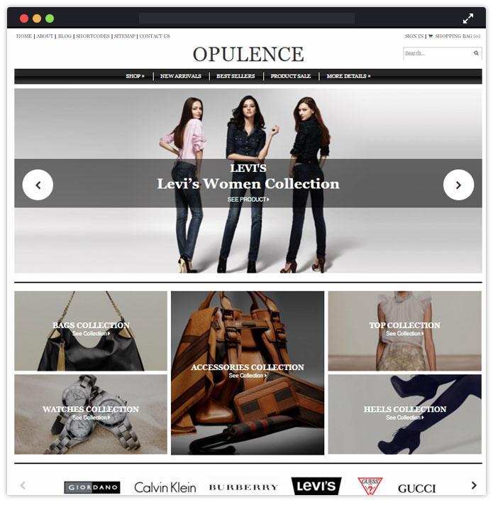 Opulence Best Fashion WordPress Themes
